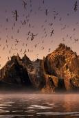 Wild Ireland: Edge of the World Movie Poster