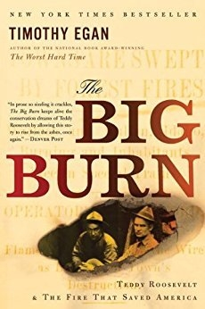 Big Burn Best Book Cover